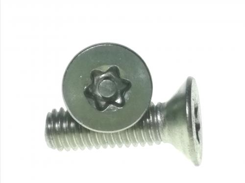 stainless-csk-torx-security-screw